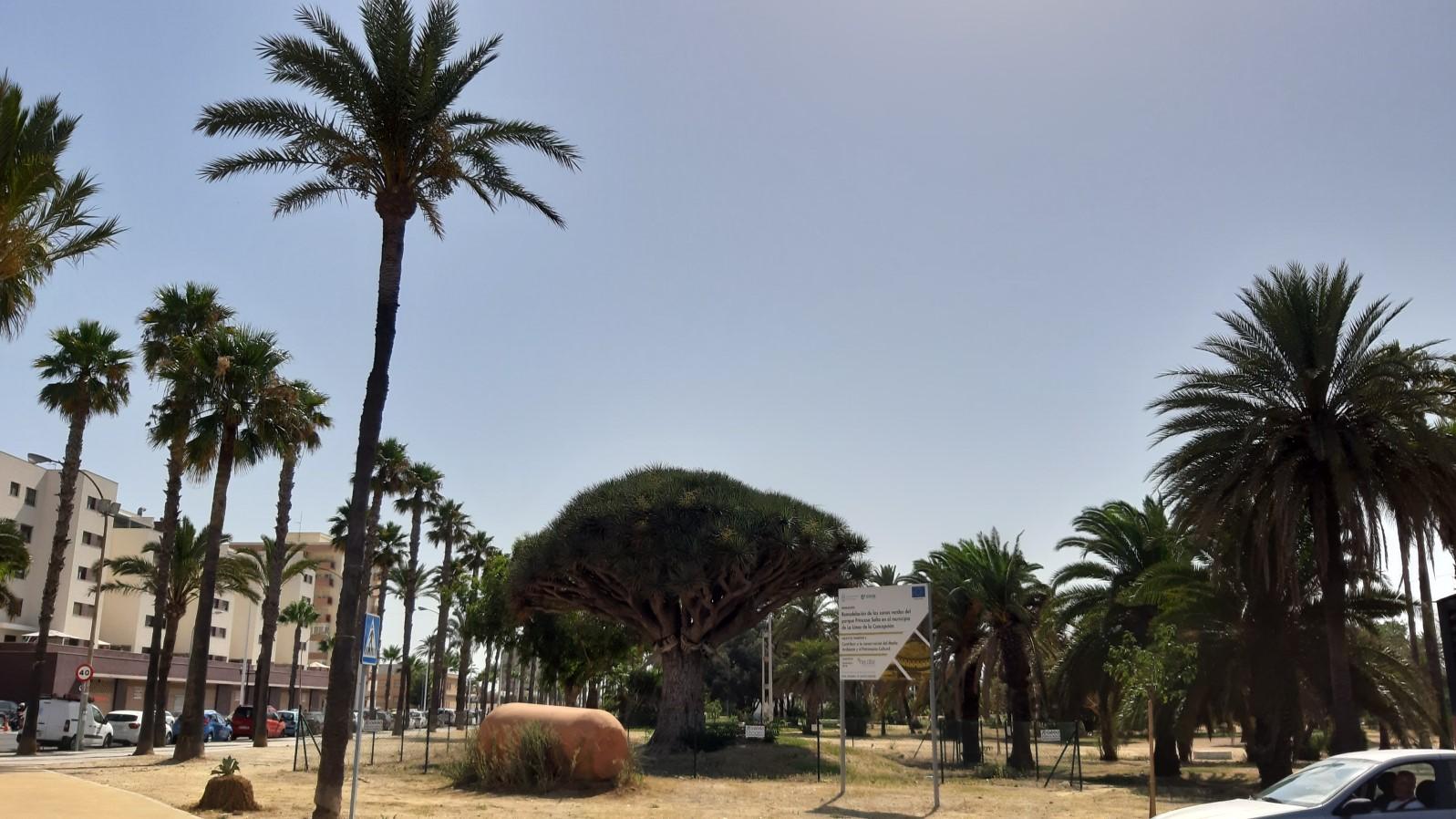 Parque Princesa Sofia I