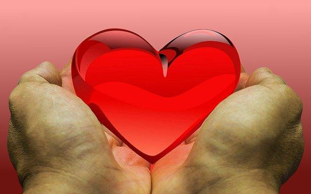 donaciones organos